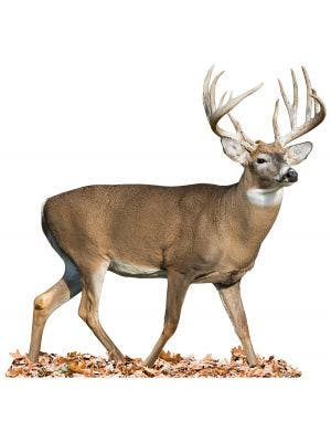 Whitetail Walking Right - Cutout