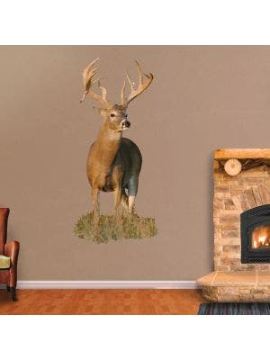 Whitetail Buck with Right Drop Tine - Cutout
