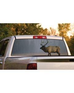 Bull Elk In Meadow Window Graphic