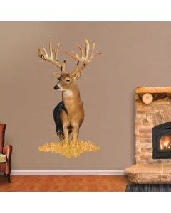 Whitetail Buck - Cutout