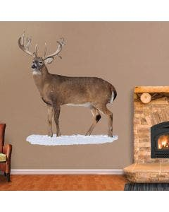 Broadside Whitetail Buck - Cutout