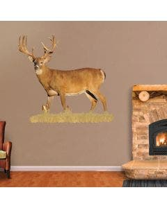 Broadside View of Whitetail Buck with Sticker Points - Cutout