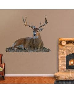 Bedded Buck - Cut Out