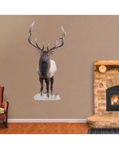 Bull Elk - Cutout