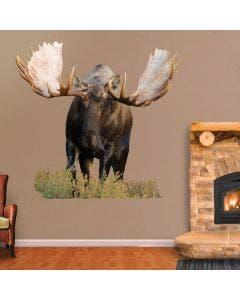 Moose - Cutout