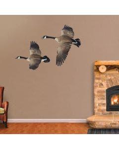 Canada Goose Soaring Left - Cutout