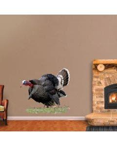 Gobbling Merriam Wild Turkey - Cutout