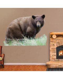 Cinnamon Black Bear - Cut Out