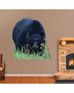 Giant Black Bear Stalking - Cut Out